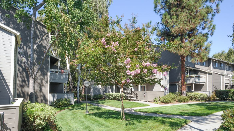 briarwood apartments sunnyvale 180 pasito terrace