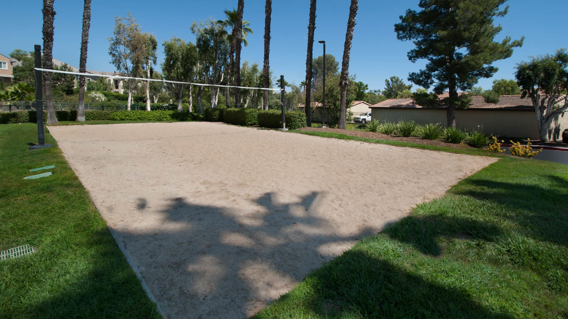 Siena Terrace Apartments - Volleyball Court