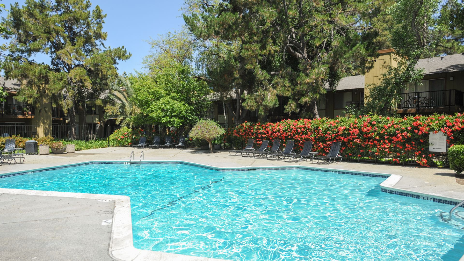 Laguna Clara Apartments - Pool