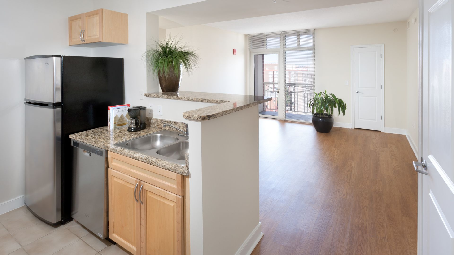 1210 Mass Apartments - Living Room and Kitchen