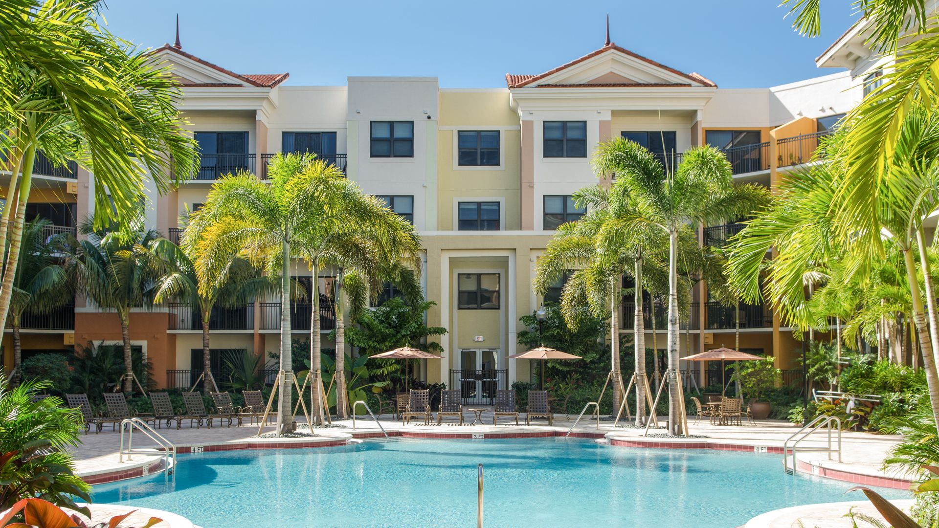Nexus Sawgrass Apartments   Swimming Pool