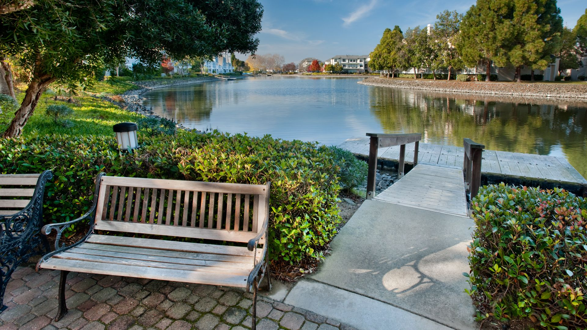 Riva Terra Apartments at Redwood Shores - Pond