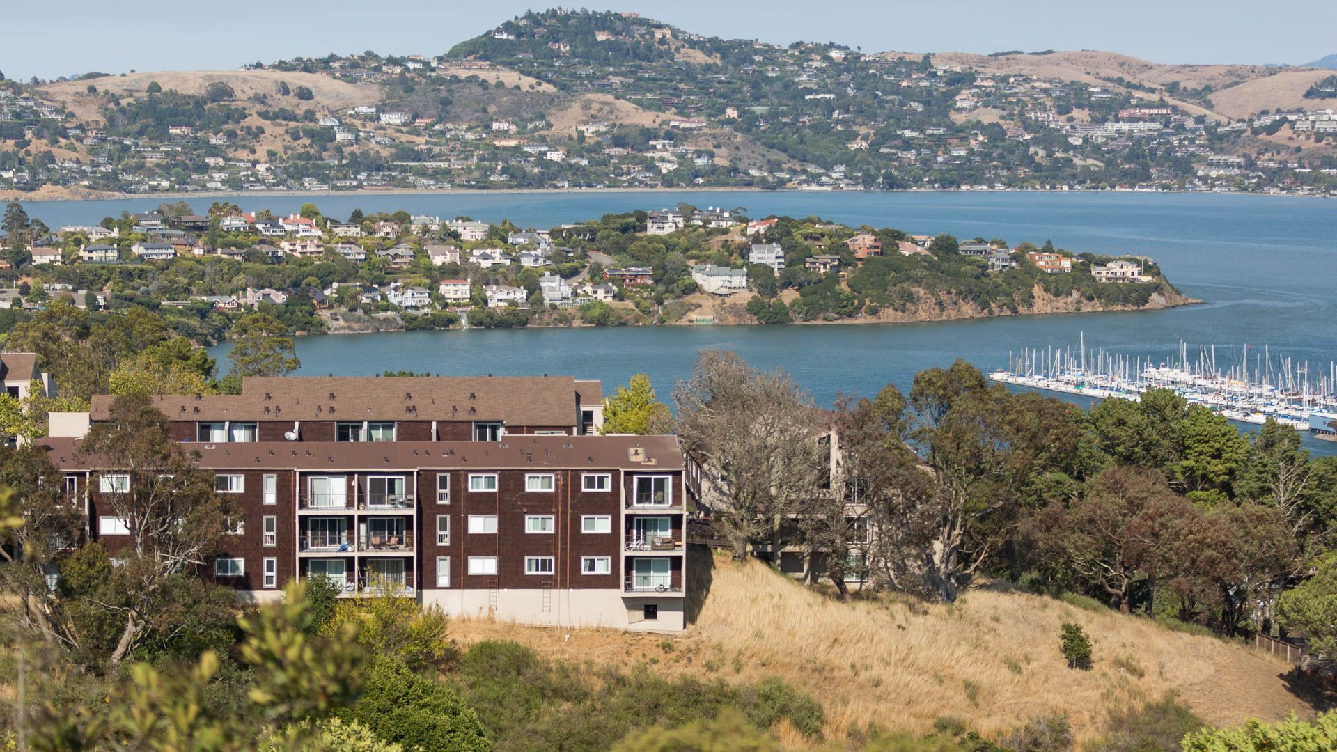 Summit at Sausalito Apartments - Views