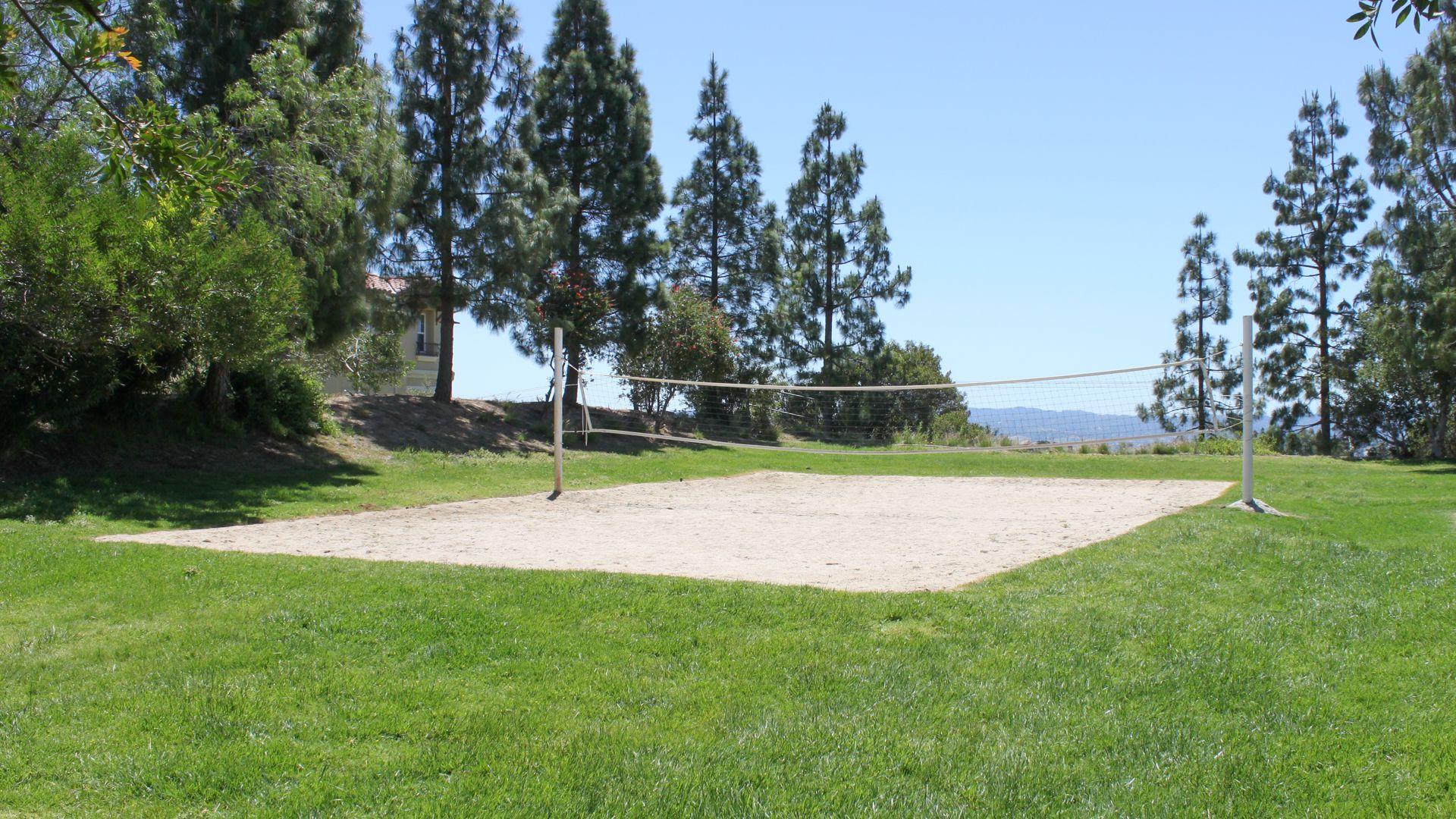 Summerset Village Apartments - Volleyball