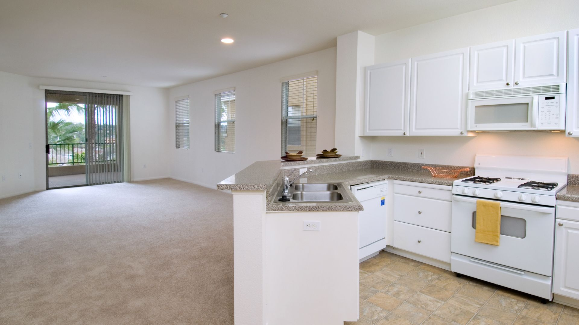 Encinitas Heights Apartments - Kitchen and Living Room