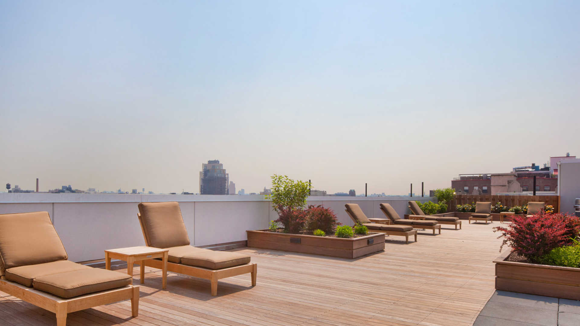 Roof Deck with City View