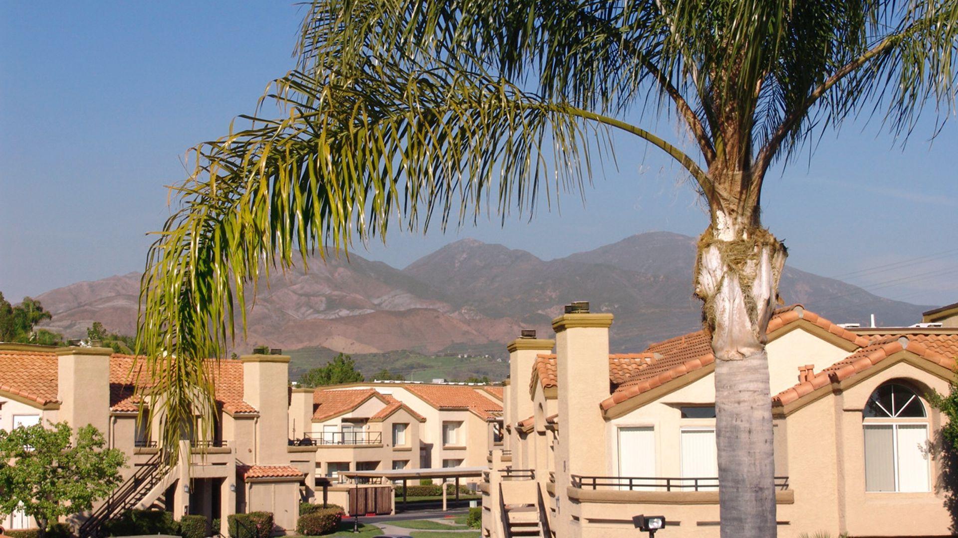 Vista Del Lago Apartments - Views