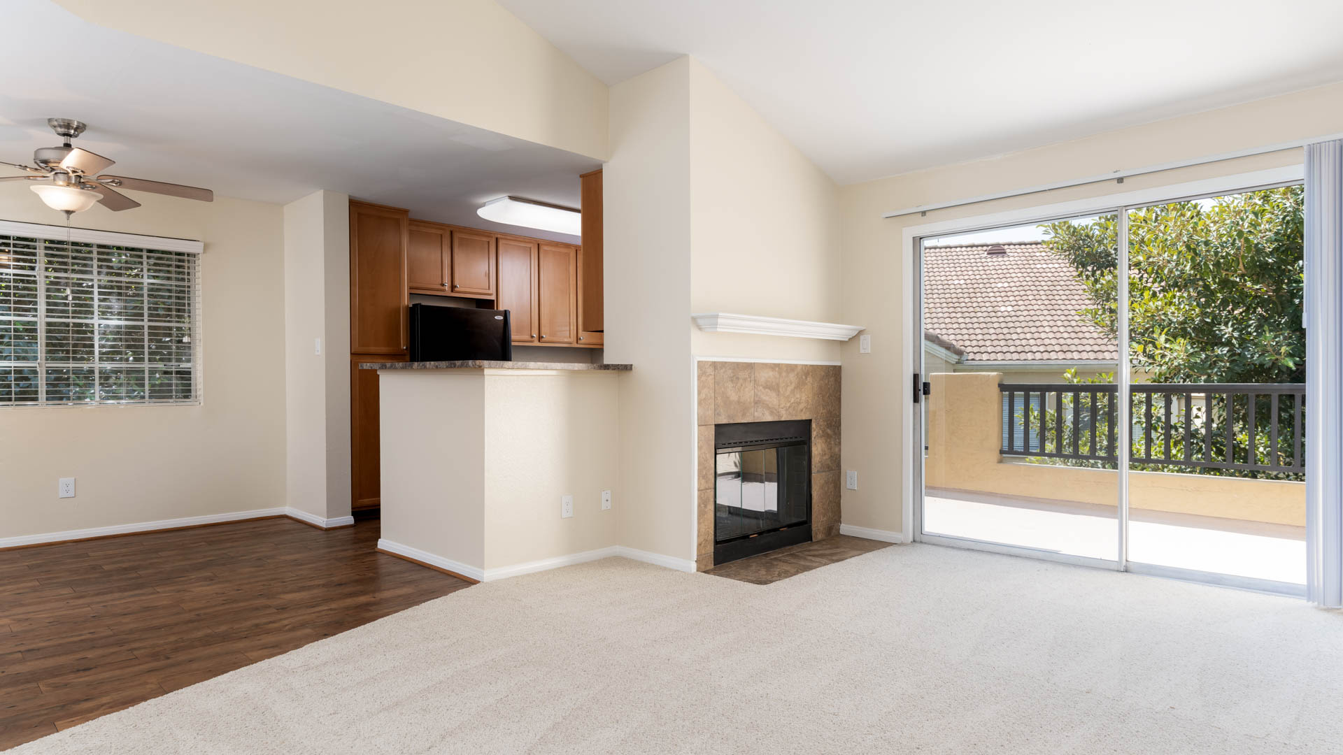 Deerwood Apartments - Living Area with Fireplace and Balcony