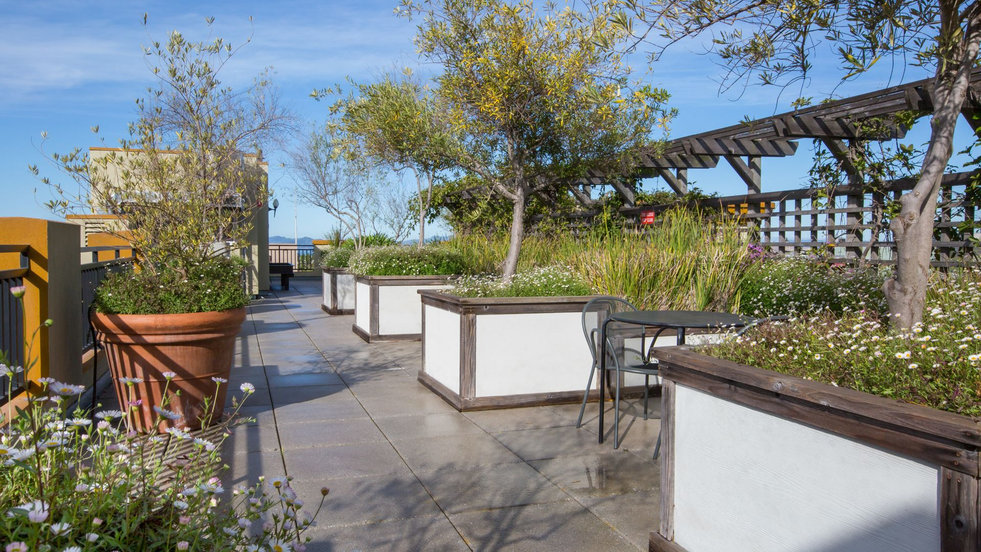 ARTech Apartments - Rooftop Deck