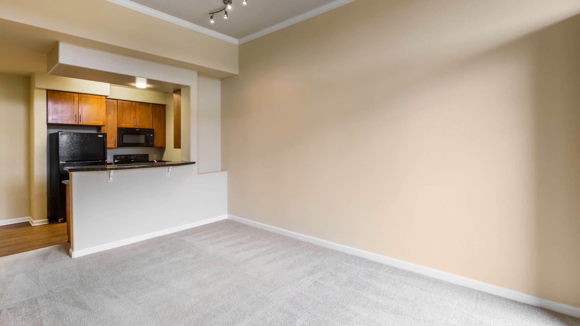 Kelvin Court Apartments - Living Room