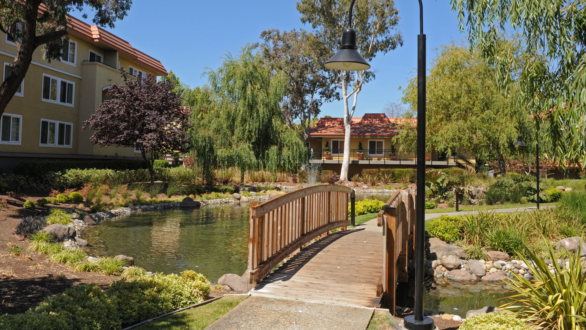 Northpark Apartments - Pond