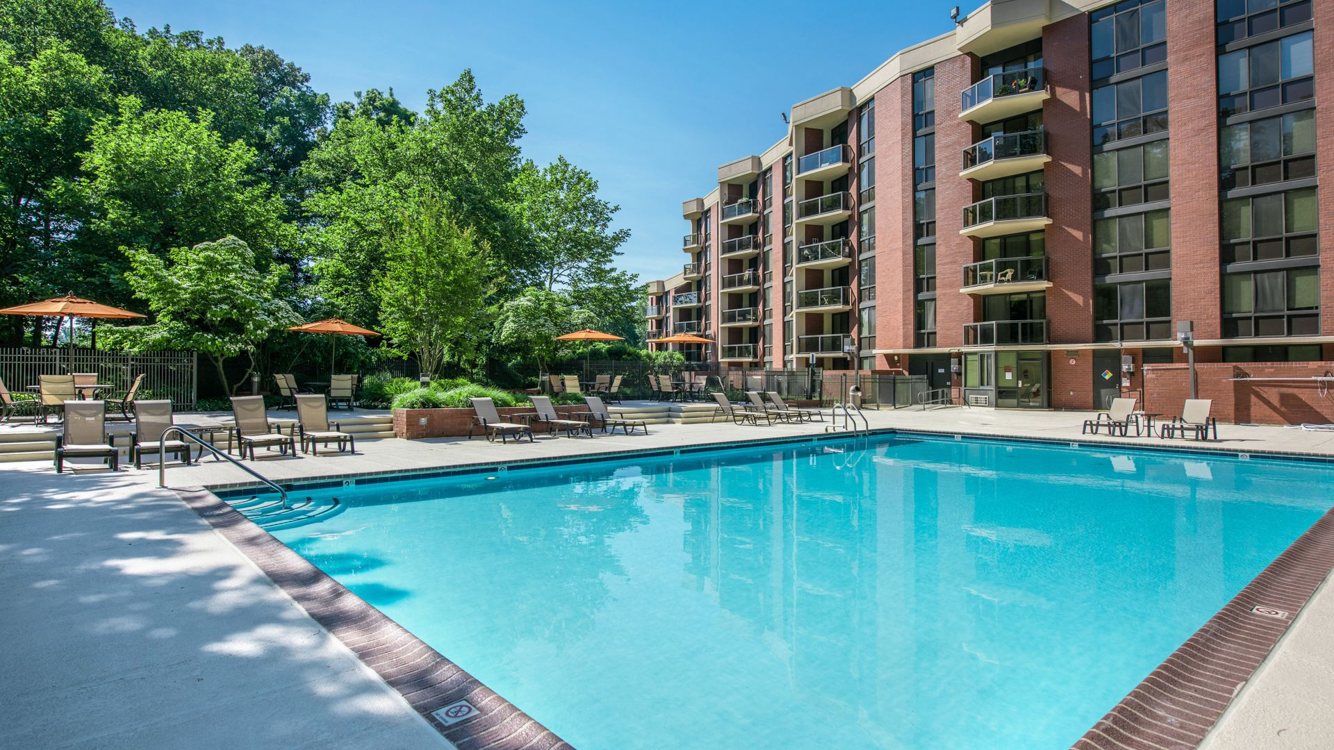 2501 Porter Apartments - Swimming Pool