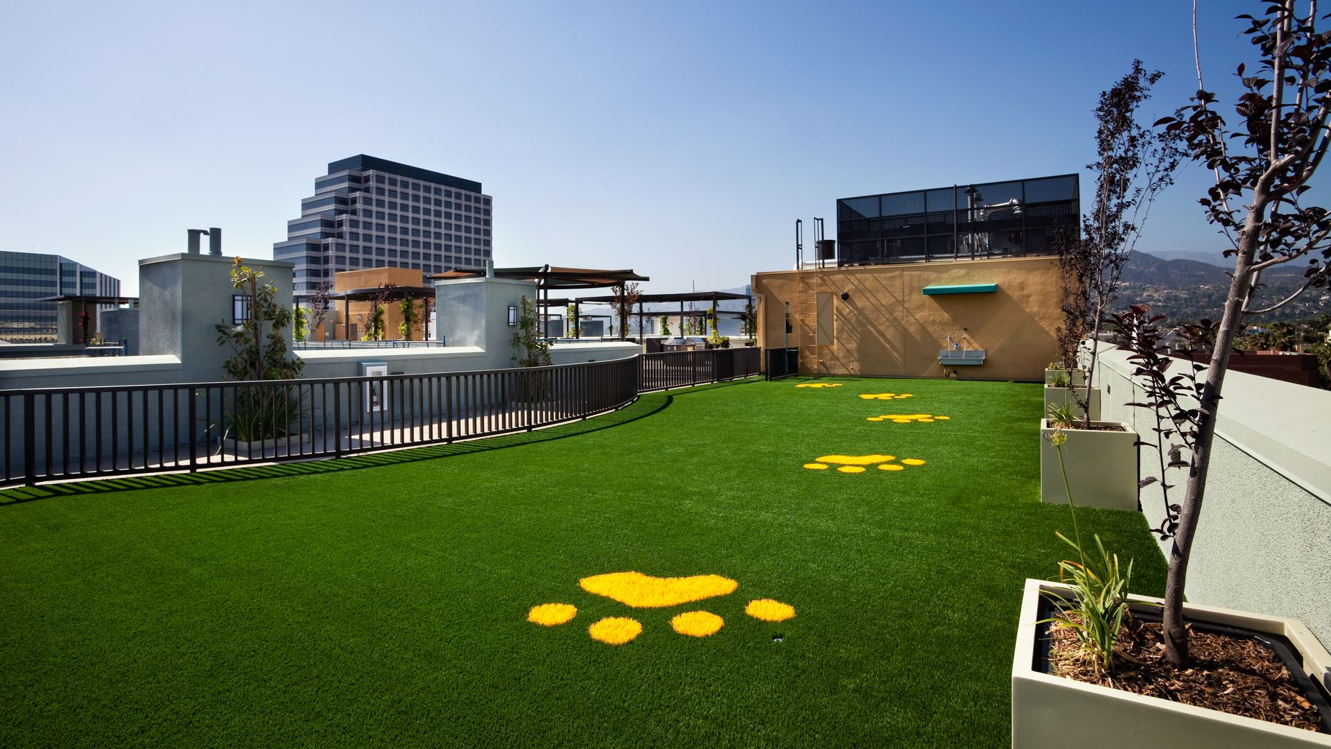 Eleve Lofts and Skydeck - Dog Run