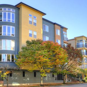 City square bellevue apartments in downtown bellevue 938 110th mosaicimaget solutioingenieria Images